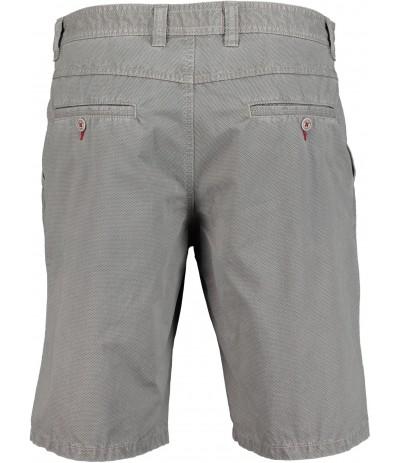 PARKLAND 2 Spodnie męskie krótkie szary