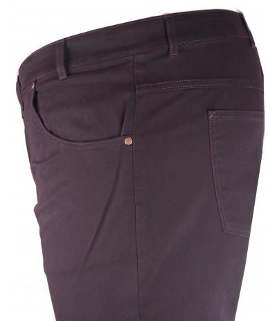 DIV 588 Spodnie męskie śliwka duże rozmiary